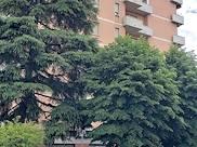 Appartamento 45 cod. 1323451