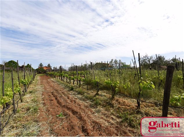 Civita Castellana: Terreno in , Via Falerina, 165